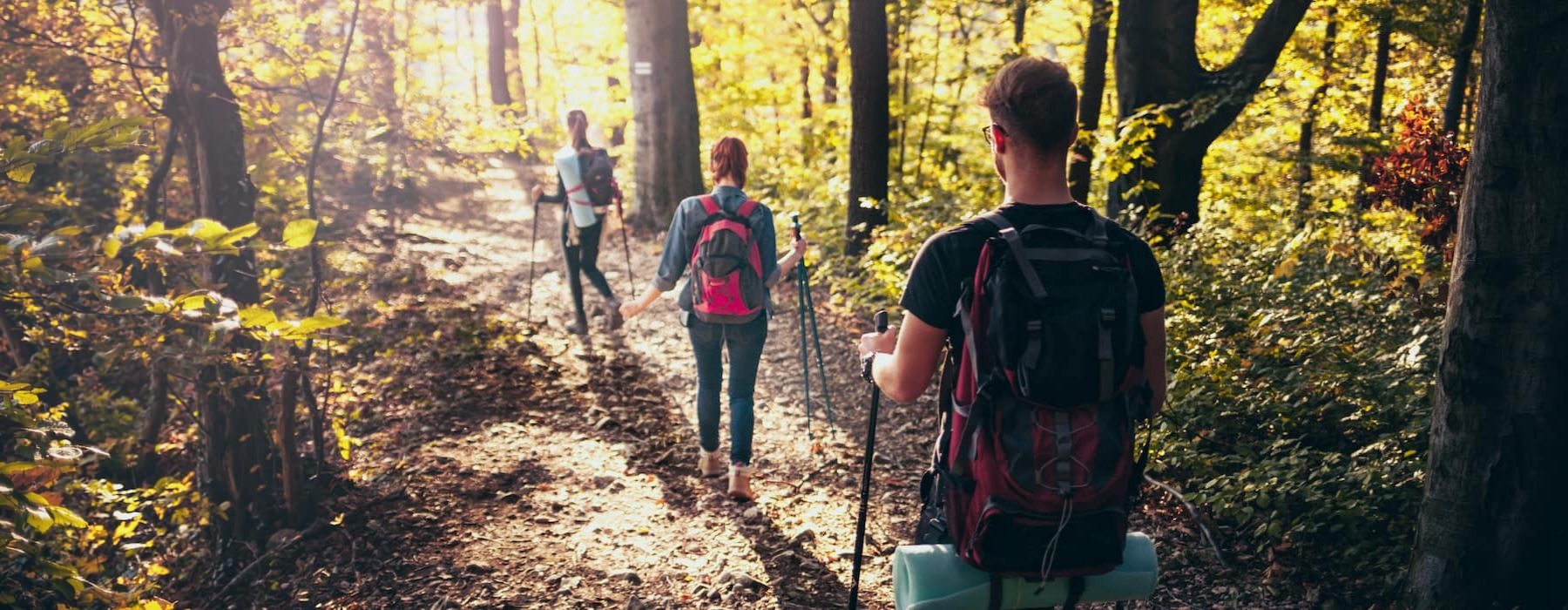 lifestyle image of a few people hiking in bright woods